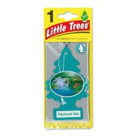 Little Tree エアーフレッシュナー Rainforest Mist