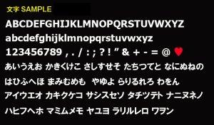 画像2: カスタム ライセンス フレーム JPNサイズ / ブラック <17.0cm × 33.5cm>
