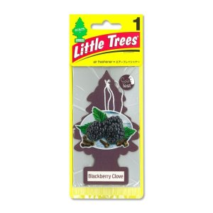 画像: Little Tree エアーフレッシュナー Black Berry