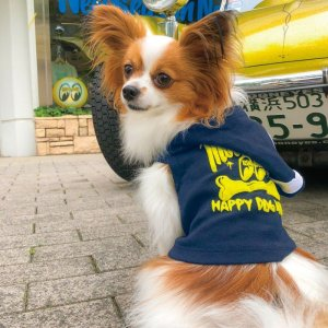画像: MOON ドッグ フーディー 【小型犬、中型犬用】